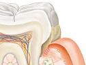 Стоматологическая клиника Люксдент