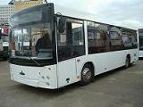 Автобус МАЗ-206060 Перевозка лиц с ограниченными физическими возможностями